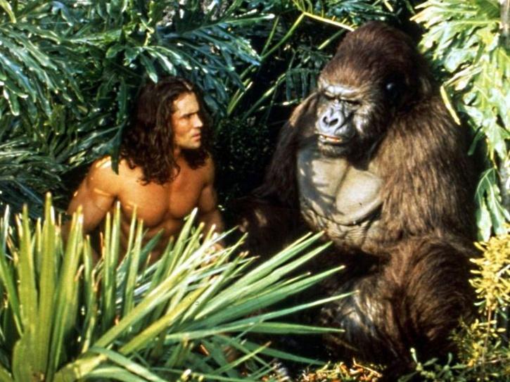 Tarzan Actor Joe Lara and his wife Dead in a plane crash